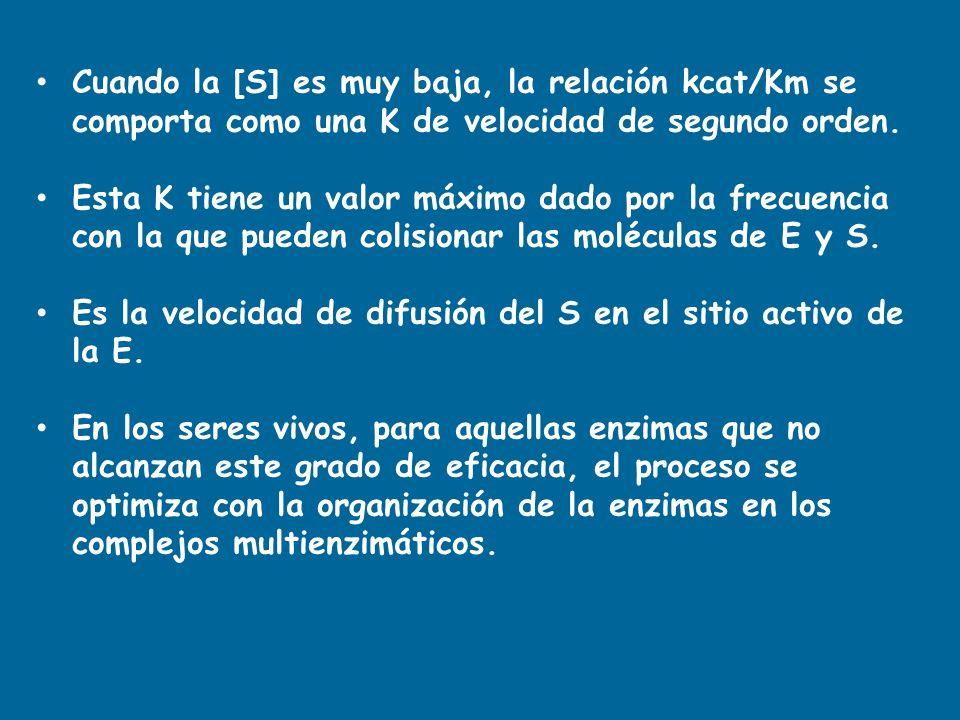 Cuando la [S] es muy baja, la relación kcat/Km se comporta como una K de velocidad de segundo orden.